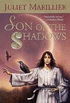 Son of the Shadows: Book Two of the Sevenwaters Trilogy (The Sevenwaters Series 2) (English Edition)