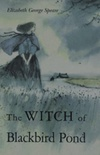 The witch of the blackbird pond