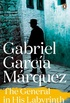 The General in His Labyrinth (Marquez 2014) (English Edition)