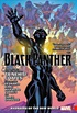 Black Panther, Vol. 2: Avengers Of The New World
