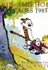 Calvin and Hobbes Sunday Pages 1985 - 1995