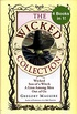 The Wicked Years Complete Collection: Wicked, Son of a Witch, A Lion Among Men, and Out of Oz (eBook Bundle) (English Edition)