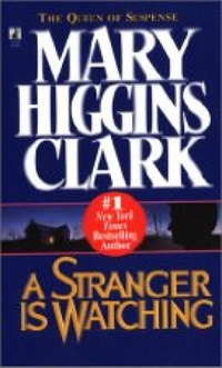an overview of the book a stranger is watching Netflix dives into spooky sci-fi with 'stranger things like the feeling you get from watching an old steven spielberg film or reading a creepy stephen king book.